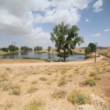 SR Tizguite : Plan d'eau piscicole de Zerrouka