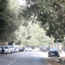 O. Tizguite en aval d'Ifrane : des centaines de véhicules stationnent le long de la route