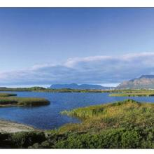 Rondevlei (looking southwards over the vlei towards Muizenberg Peak and Cape Point)