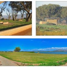 Newly completed infrastructure on Zeekoevlei Eastern Shore, including braai areas (top left), ablution  facilities (top right) and a landscaped central picnic area (bottom).