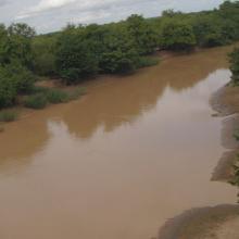 Photo 11: Vue panoramique du fleuve Mouhoun dans la commune de Tchériba
