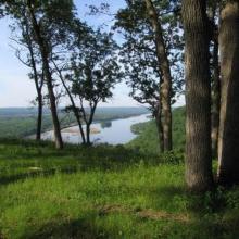 Bluff woodland  along LWR