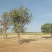 Paysage autour du lac Higa
