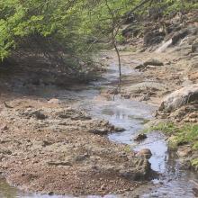 Fresh water stream Pos Amerikano at Washington-Slagbaai