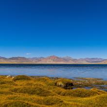 Panoramic view of the freshwater lake of Startsapuk Tso, situated in the Tso Kar basin.
