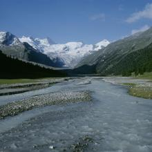 Brook crossing the proglacial margin. In the background, the Roseg glacier.
