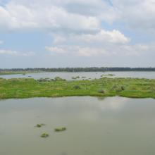 View of Bhindawas Wildlife Sanctuary
