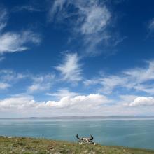 landscape of Zhaling lake