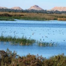 Photo du lac supérieur du site El Melah