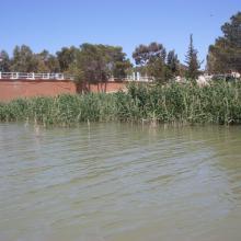 barrage de Boughezoul