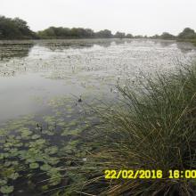 Impact du dragage du cours d'eau de Yetti yone par le PREFELAG