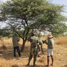 Inventaire de la flore de la RNCP effectué par les agents et les écoguides écogardes