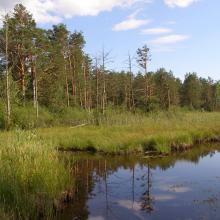 the Zholobnytsya River