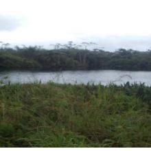 Lac Diboundi dans les environs du village Bangondo 2