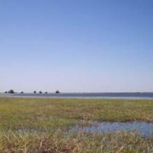 Une vue de la plaine de Sourou
