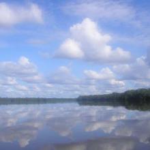 Rivière Sangha