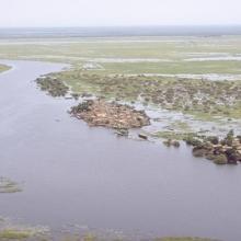 Une vue du Delta Intérieur du fleuve Niger au Mali