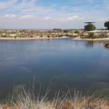Salinas de Santa Pola. Laguna en la zona dunar del Pinet