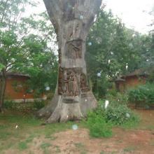 Photo 4 : Valorisation artistique du bois mort dans le campement de chasse