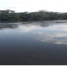 Rivière Dziélé en amont de Lékéti