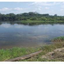 Confluence des rivières Lékéti et Dziélé au port de Lékéti