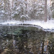 Oostriku spring on winter