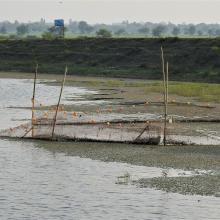 Fishing activity