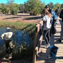 Marjal de Almenara. Tareas de muestreo efectuado por voluntarios (programa de seguimiento de calidad de aguas, Generalitat Valenciana)