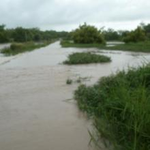 CAP/PONASI inondé par le Nazinon