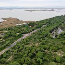 L'Albufera. Vista aérea del bosque de la Devesa y de la Mata del Fang.