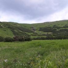 Stow Ozirnyi-Brebeneskul