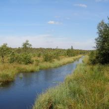 Berezyna river