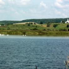 A view of the pond for commercial fishery (in the background – Kuropatnyky Village).