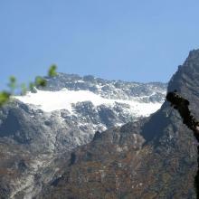 Speke Glacier