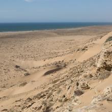 Littoral Aftissate-Boujdour: diversité des habitats et valeur paysagère (vue vers le Nord)