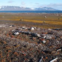 Mosvatnet, Sørkappøya. Remains from a Russian trappers station