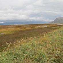 Tanamunningen, view towards Tanafjorden.