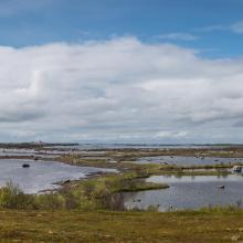 Western (marine) part of reserve.