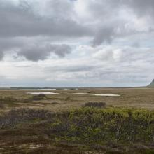 From the eastern (Mire) part of the reserve.