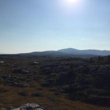 Havmyran
