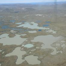 Many lakes have silted water.