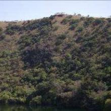 Encinares en la parte noreste del interior del crater. Sobre la cresta se observan los miradores