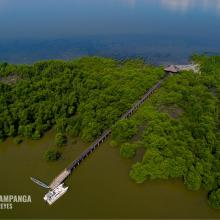 Mangrove Forest within the SPCW